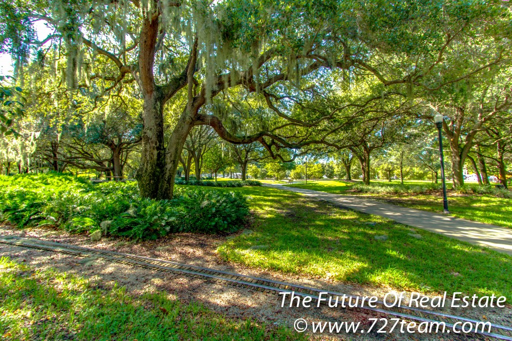 Beautiful Trees In Largo Central Park